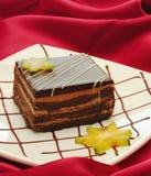 Bolo de Tiramisu Imagem de Stock