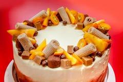 Bolo delicioso com laranja e chocolate Imagem de Stock
