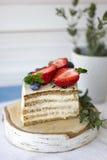 Bolo dietético com bagas Pedaço de bolo Sobremesa deliciosa, saudável T fotos de stock