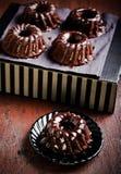 Bolo do bundt do chocolate mini Fotografia de Stock Royalty Free