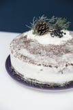 Bolo do Natal com a neve decorada Fotografia de Stock