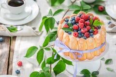 Bolo doce do iogurte com framboesas e mirtilos no jardim Imagem de Stock