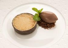 Bolo dos alces do chocolate com a sobremesa do gelado Fotos de Stock Royalty Free
