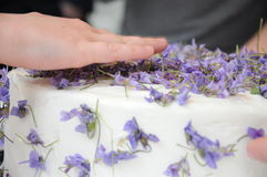 Bolo Flowery Imagens de Stock Royalty Free