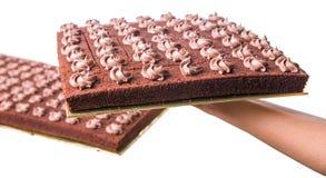 Bolo II da folha do chocolate Imagem de Stock
