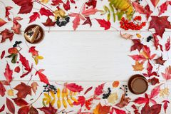 Bolo, viburnum, chokeberry preto, Rowan vermelho, folhas de outono e uma xícara de café com leite em um fundo claro Pratos da arg imagem de stock