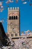 Bologna, king Enzo palace tower Stock Image