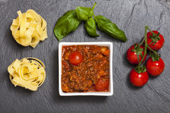 Bolognaise Royalty Free Stock Photos