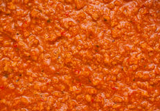 Bolognaise sauce. Texture of some bolognaise sauce with minced meat Stock Photography