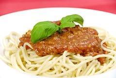bolognaisespagetti royaltyfri foto