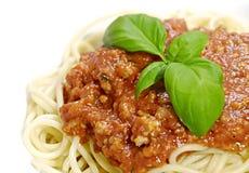 bolognaisespagetti royaltyfria bilder