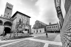 Bolognamitt Royaltyfri Foto