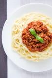 Bolognes degli spaghetti Fotografia Stock Libera da Diritti