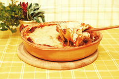 bolognese烤宽面条片式 免版税库存图片