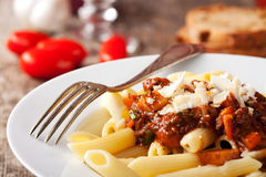 Bolognese Stock Images