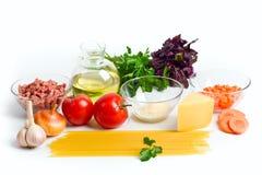 bolognese ingrediensspagetti Fotografering för Bildbyråer