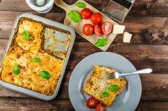 bolognese lasagna Royaltyfria Bilder