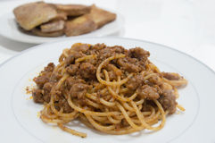 Bolognese Royalty Free Stock Images