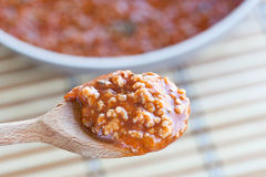 Bolognese Sauce On Spoon Stock Images
