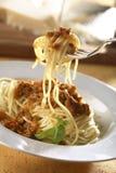 bolognese spagetti Fotografering för Bildbyråer