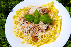 Bolognese spagetti med parmesanost Royaltyfri Foto