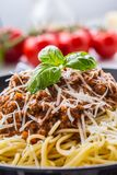 bolognese spagetti Pastaspagetti Bolognese med basilika och garnering i restaurang eller hem Royaltyfria Foton