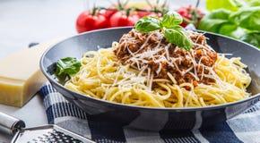 bolognese spagetti Pastaspagetti Bolognese med basilika och garnering i restaurang eller hem Royaltyfri Bild