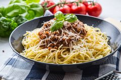 bolognese spagetti Pastaspagetti Bolognese med basilika och garnering i restaurang eller hem Arkivfoton