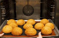 Bolos corados frescos apenas do forno appetizing bolos na folha de cozimento imagem de stock