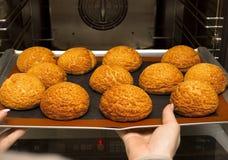 Bolos corados frescos apenas do forno appetizing bolos na folha de cozimento imagens de stock
