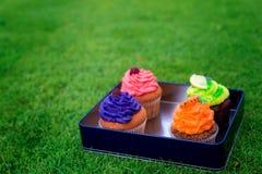 Bolos deliciosos, bonitos em uma caixa Piquenique na peça da solteira Imagem de Stock