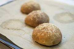 Bolos do hamburguer Fotos de Stock Royalty Free