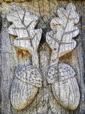 Bolotas de madeira Foto de Stock
