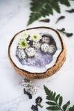 Bols de Smoothie avec Dragon Fruit pour l'été Photographie stock libre de droits