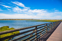 Bolsa Chica Ecological Reserve Huntington Beach, Kalifornien Royaltyfria Bilder