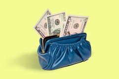 Bolsa com dinheiro, dólares Fotografia de Stock Royalty Free