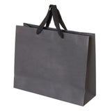 Bolsa de papel gris aislada en blanco Fotografía de archivo libre de regalías