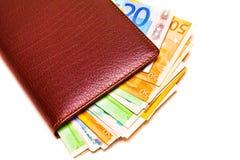 Bolsa e dinheiro Imagem de Stock Royalty Free