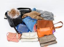 Bolsas de couro denominadas elegantes das senhoras bonitas agradáveis no fundo cinzento claro Imagens de Stock