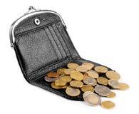 Bolsas e moedas Fotografia de Stock