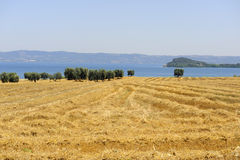 Bolsena lake (Lazio, Italy) Stock Photos
