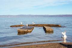 Bolsena lake Stock Image