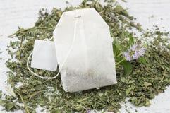Bolsita de té de la menta y planta de la menta fresca Imagen de archivo libre de regalías