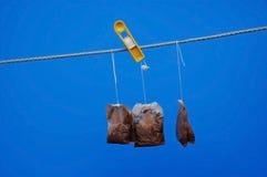 Bolsitas de té usadas en The Sun Foto de archivo libre de regalías