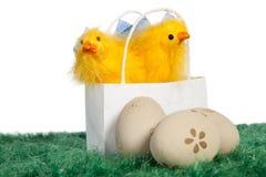 Bolso blanco con los pollos del bebé Foto de archivo