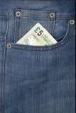Bolso com dinheiro Foto de Stock Royalty Free