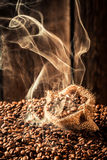 Bolso de café por completo de las semillas de la fragancia fotografía de archivo libre de regalías