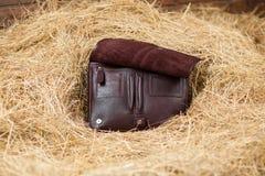 Bolso de cuero en el heno Imagen de archivo libre de regalías