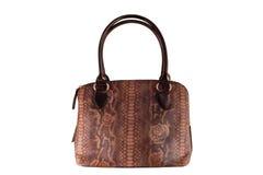 Bolso de cuero marrón del vintage en cuero del reptil con el modelo Imagen de archivo libre de regalías