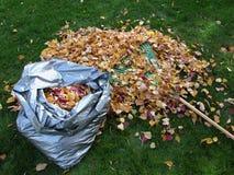 Bolso de hojas Imágenes de archivo libres de regalías